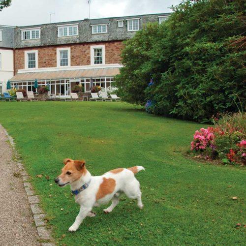 Dog Friendly Hotel | Cornwall | Budock Vean | Helford River