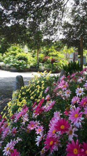 Helford River | Gardens | Cornwall | Budock Vean Hotel