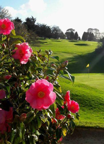 Golf Hotel in Cornwall | Budock Vean Hotel