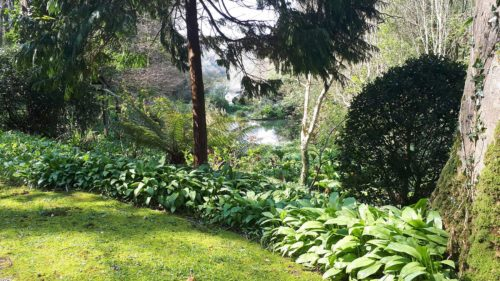 Hotel with Gardens | Budock Vean | Cornwall