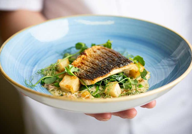 Budock-Vean-Hotel-Food-Fish-Main-Course