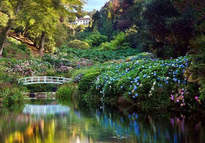 Trebah Gardens Cornwall