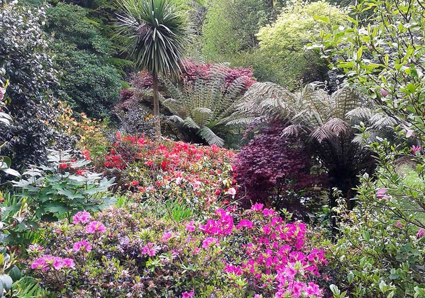 Hotel with Gardens in Cornwall | Budock Vean